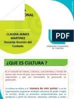 Culturaorganizacioncj 150927231726 Lva1 App6891