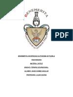 ensayofinalterapiaocupacional2-140407122119-phpapp02