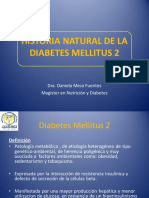 Historia Natural de La Diabetes Mellitus 2