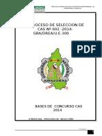290_directiva Cas 2014