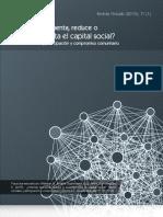 Capital social el internet