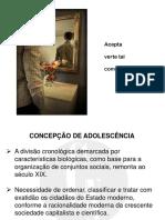 4 - Concepção de Adolescência