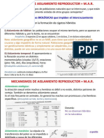 precigotico y postcigotico.pptx