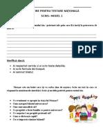 pregatire_pentru_testare_nationala_1.eu.docx