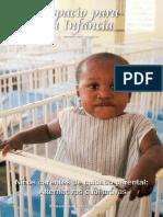 Automanejo Emocional Pautas Para La Intervencion Cognitiva PDF