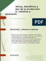 Características, Beneficios y Desventajas de La Producción