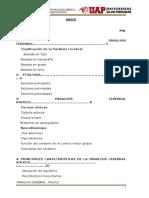 PARALISIS CEREBRAL  ATAXICA  .docx