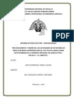 Informe de Practicas Pre Profesionales (Supo Rodriguez, Romel Clever).pdf