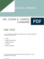 CLASE 3 - Semiologia de Piel