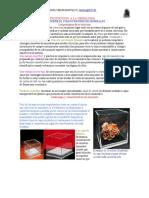 Manual de Gemologia