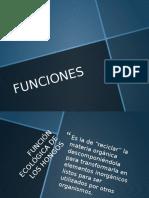 FUNCIONES-hongos.pptx