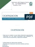 Cicatrizacion 28032017.pptx