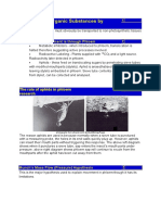 Evidence of mass flow in phloem.doc