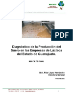 Diagnostico de La Produccion de Suero
