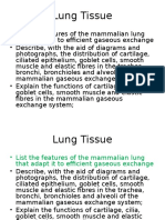 As 1 2 1 Lung Tissue Task