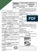 00000ElizeteAula16FenomenosSemanticosIdentificacao1
