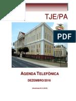 AGENDA TJPA-2016.pdf