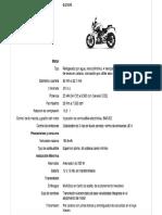Bmw G310 R 1 .pdf
