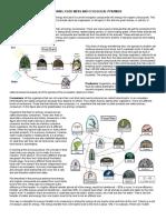 Ecological Pyramids Worksheet 2015