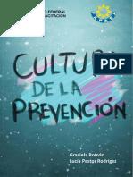 Cultura de La Prevención-sm