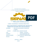 TAREA UNIDAD 01 Elección de La Organización, Descripción, Generación de Matriz IPER, Mapa de Riesgos