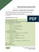 80 Micropropagacion Laboratorio Educacional