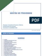 Gestão Do Processo_REV2 1