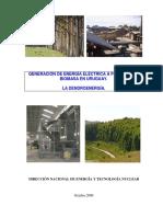 Generación de Energía Eléctrica a Partir de La Biomasa en Uruguay.
