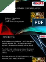 1. Seminário de Pesquisa (July)