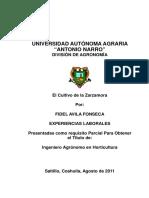 t18890 Avila Fonseca, Fidel Memoria