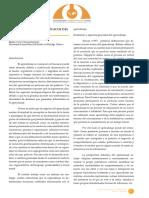 desarrollo neuropsicológico.pdf