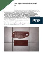 Guillotina casera.pdf