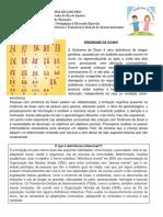 caderno_pedagogico_deficiencia_intelectual_sindrome_de_down.pdf