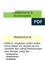 1.4.4.1 - Metabolisme Dan Bioenergetika