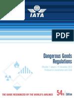 DG IATA 2013.pdf