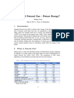 Liquified Natural Gas – Future Energy (PDF)