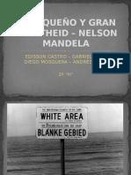 El Pequeño y Gran Apartheid Nelson Mandela