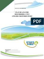 MODEL-PLAN-AFACERI-CROITORIE-FEMEI.pdf