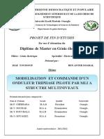 DIAF_BENANTER.pdf
