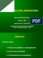SEMINARIO  Segurança Lab -aula 24-04-12.pdf
