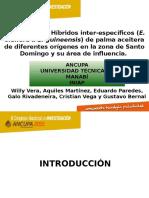 3 Adaptabilidad de híbridos Willy Vera.pptx