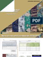 Nueva versión_SSOpr0018_Identificacion Peligros Eval y Control Riesgos Emp Contratistas.pdf