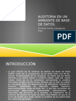Auditoria en Basededatos