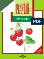 PLANTAR Morango Ed02 2011