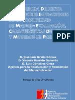 Reincidencia Delictiva en Menores Infractores. Madrid. Evaluacion y Modelos Predictivos. 2008