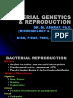 Bacterial Genetics & Reproduction