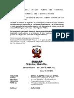 DUPLICIDAD DE PARTIDAS (PLENO).pdf