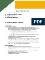 Marketing Plan (freelance job)