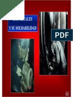 Ensayos Quimicos y Analisis Metalograficos