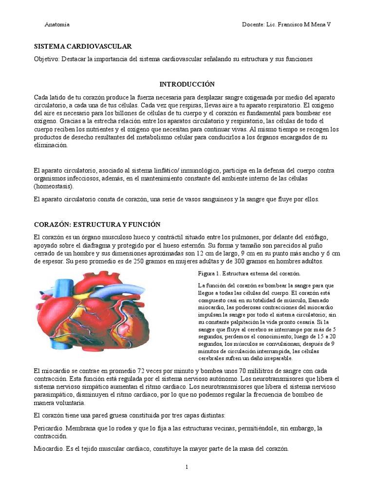 Unidad v Sistema Cardiovascular